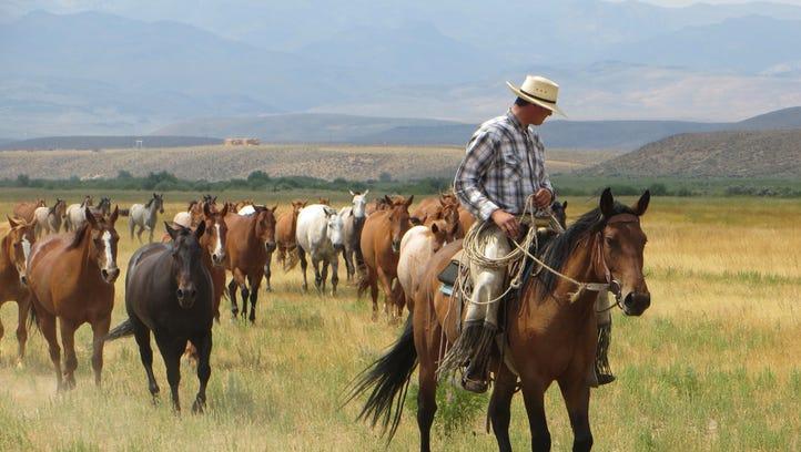 At the ranch you can join the cowboys, who ride miles
