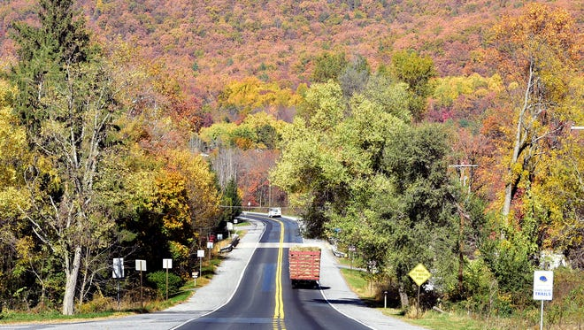 Colorful autumn leaves serve as a background on Friday, November 4, 2016 along Pa. 997 North in Fayetteville.