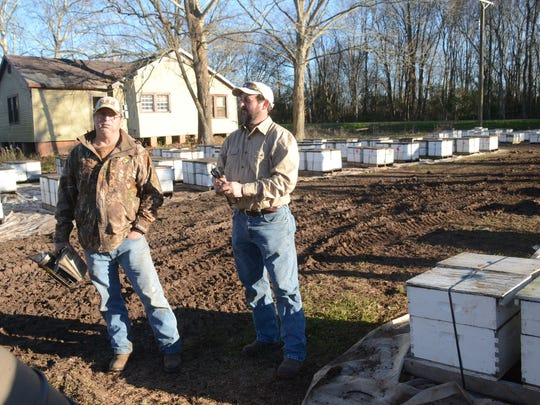 Ricky Bordelon (left) and his son Joey Bordelon are bee keepers in Moreauville. Ricky Bordelon and his wife Peggy Bordelon run the Avoyelles Honey Company while Joey Bordelon has his own honey business, Bordelon Apiaries. Another son, Jeremy Bordelon owns Bordelon's Honey Company. The State of Louisiana wants to purchase the area of land where the Bordelons raise bees in order to expand a road. Several buidlings, including the house in the background, would be demolished. They were offered about $4,500 for the land.