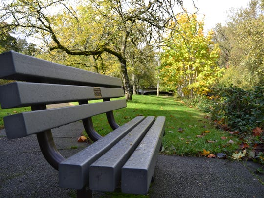 A bench sits on the edge of Pringle Park.