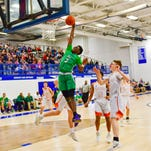Novi puts on a dunk show in district final win vs. Northville