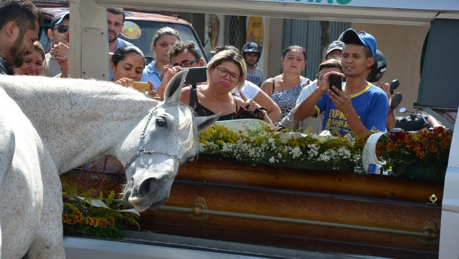 A horse, Sereno, mourns the loss of its owner and friend.