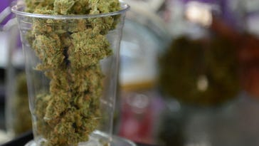 Planning staff wants Detroit to sue over marijuana laws