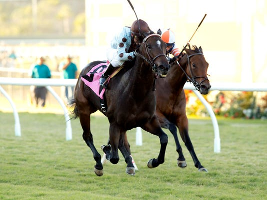 In a photo provided by Benoit Photo, Full Ransom and jockey Santiago Gonzalez, left, win the $75,000 Kathryn Crosby Stakes horse race Saturday, Nov. 7, 2015, at Del Mar Thoroughbred Club in Del Mar, Calif. (Benoit Photo via AP)