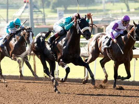 In this image provided by Benoit Photo, California Diamond, center, with Edwin Maldonado aboard, overpowers Green With Eddie, right, with Flavien Prat aboard, to win the $125,000 Santa Anita Juvenile horse race Saturday, July 9, 2016, at Santa Anita Park in Arcadia, Calif. (Benoit Photo via AP)