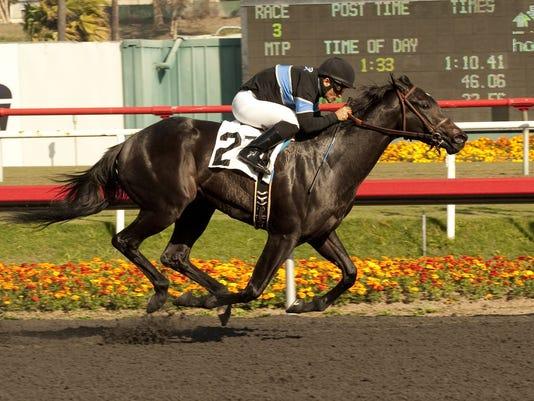 1030 BET-HORSE.jpg