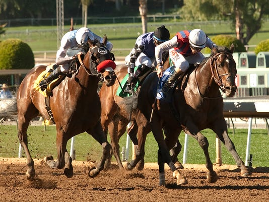 In a photo provided by Benoit Photo, jockey Gary Stevens, right, collects his 5,000th win in North America, aboard Catch a Flight on Friday, Feb. 13, 2015, in the fourth horse race of the day at Santa Anita in Arcadia, Calif. (AP Photo/Benoit Photo)