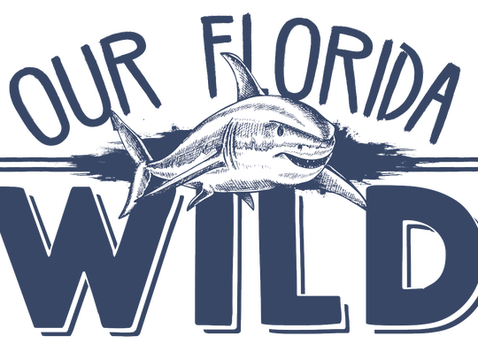 Our Florida Wild Logo
