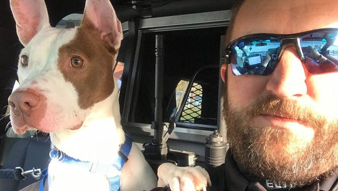 East Lampeter Police Sgt. Kondras takes a 1-year-old pitbull named Revel on patrol with him as part of the police department's and Humane League of Lancaster County's K-9 for a Day program.