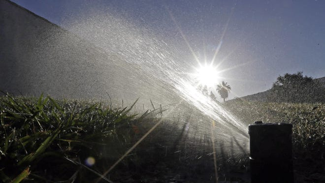 A lawn is irrigated with a sprinkler system.