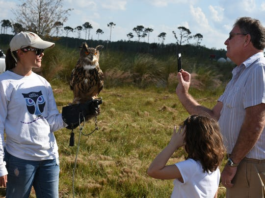 Ginger Ross of Wild Florida displays Einstein the eagle owl. Environmentalists and preservationists gathered the Friday before Veterans Day for the annual Panther Island BBQ off Corkscrew Road, celebrating the restoration of thousands of acres of interior Collier County.