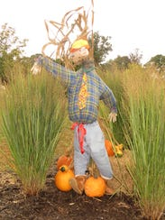 The scarecrow designed by Ms. Leigh Hutchins' third