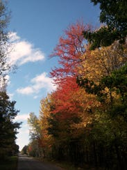 Many fall color seekers come to Navarino Wildlife Area,