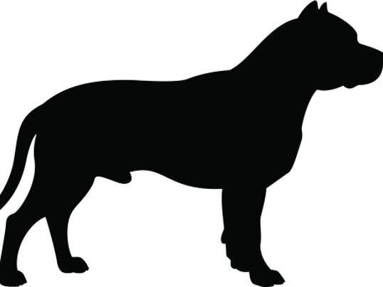 -pit bull silhoette.jpg_20140814 (2).jpg