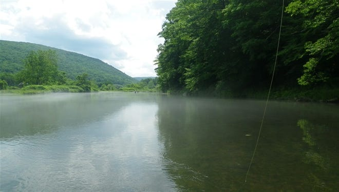 A summer fog lies above the water on the West Branch of the Delaware.
