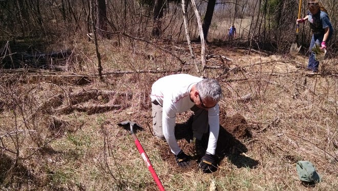 Jerry Apps' son-in-Law Paul, plants one of 250 trees at Roshara.