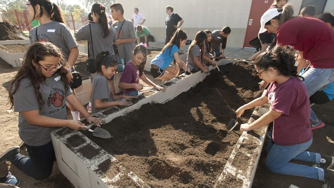 Volunteers build planter boxes in the Norman Phillips Memorial Garden at Highland Elementary School in Visalia during Make A Difference Day on Saturday, October 24, 2015.