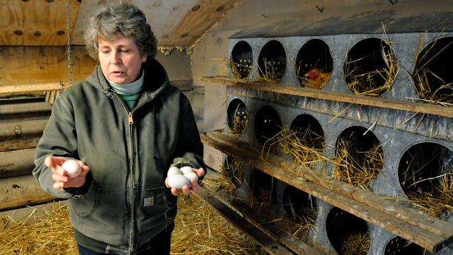 Terri Emmerich collects fresh eggs from one of her chicken coops March 18.