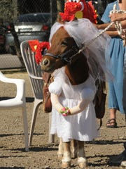 Even horses can be a part of the fun at Cave Creek Wicked, a daytime family-friendly Halloween celebration and nighttime bar crawl.