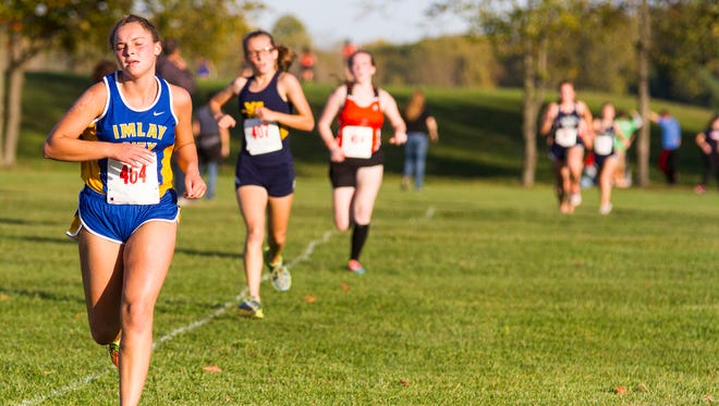 Cross country runners from Imlay City High School, Algonac High School, Armada High School and Yale High School near the finish line during the varsity women's race at the Blue Water Area conference meet Oct. 17.