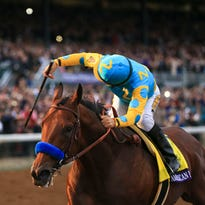 Oct 31, 2015; Lexington, KY, USA; Victor Espinoza aboard American Pharoah races during race eleven of the 2015 Breeders Cup Championships at Keeneland. Mandatory Credit: Richard Mackson-USA TODAY Sports