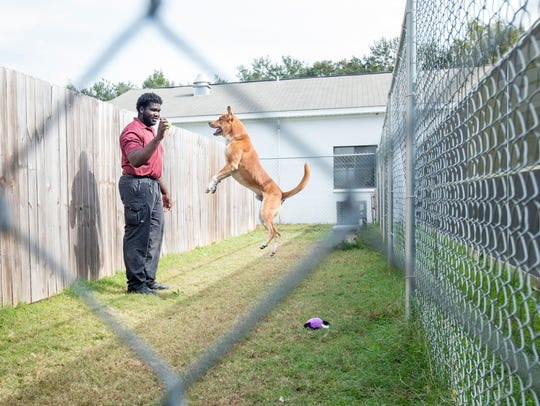C.J. McGhee gives Duke, a 3-year-old German Shepherd