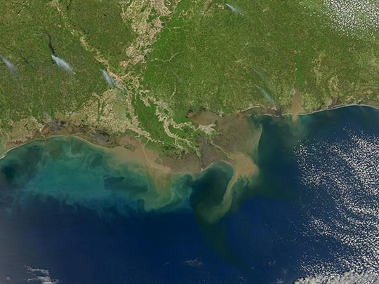 Sediment-laden water pours into the northern Gulf of