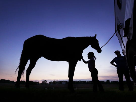 Elizabeth Davis, 5, brushes down her mother Ashley Davis' horse, Gourmet, after a ride at the Springfield Riding Club.