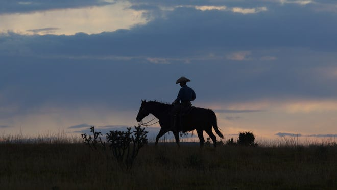 A cowboy rides off into the sunset. His only hope is one more day in the saddle.