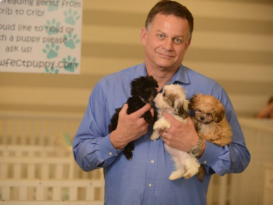 """John Thompson is the owner of the Pawfect Puppy, a pet store that would be affected by a proposed ordinance in Franklin that would ban the sale of cats and dogs. Thompson says business picks up when protests draw attention to his business. """"Any publicity is good publicity,"""" Thompson said. Thompson recalled prior efforts by the Humane Society to ban the sale of pets at the federal and state level and says the latest proposed ordinance is a misguided, last ditch effort that will prove futile since the business is licensed and inspected by the state of Tennesee."""