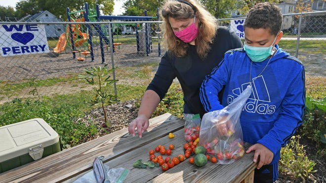 Sandy Russell, 39, and her son Kyle Jackson, 11, sort tomatoes and other vegetables Tuesday in the community garden at Perry Elementary School, 955 W. 29th St. Jackson is a fifth-grader at Perry and a regular volunteer at the garden, which is a community schools initiative funded by several sources. The United Way of Erie County leads the partnership.
