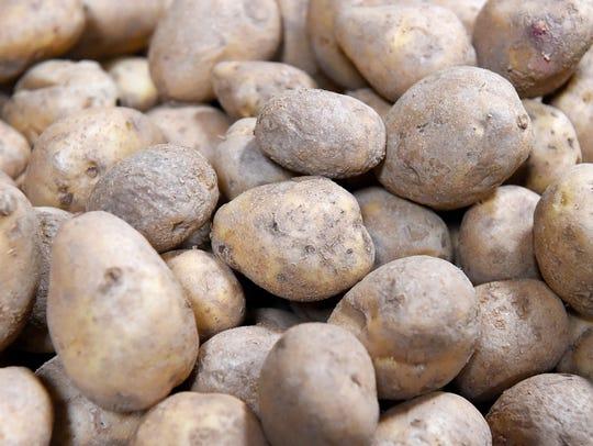 Potatoes at the Blue Ridge Area Food Bank.