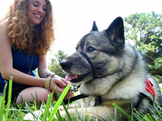 Chara rests in the grass in front of handler Kris Church-DiCiccio,