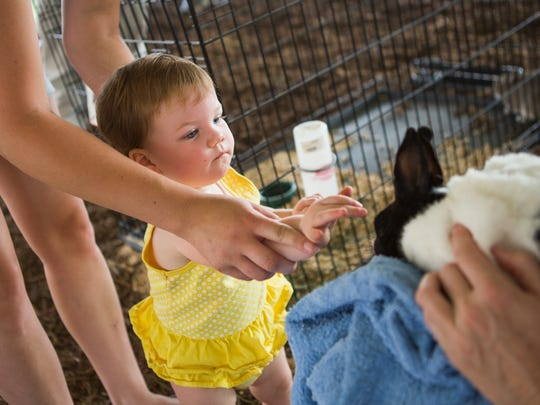 Grace Seder, 1, reaches out to touch a rabbit, guided by the hand of her mom, Ashley Seder, at the Augusta County Fair's petting zoo on Tuesday, August 4, 2015.