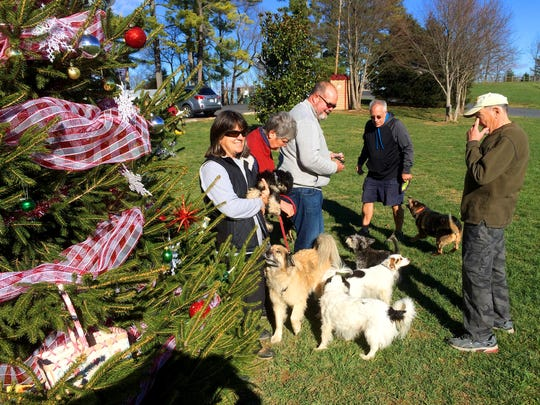 Dog owners Jackie Brokamp, Karen Reed, Tom Brokamp, Rick Womble and Bob Scates share conversation together near a tree decorated by dog walkers for the holiday, at Coyner Springs Park in Waynesboro on Tuesday, Dec. 15, 2015. Three years ago, Dorcus Gale was the person to start the tradition of decorating the tree. Dogs pictured include (in no particular order): Murphy, Lucy, Tashi, Sheila, Mackey, Dingo, Riley, Max and Maddie.