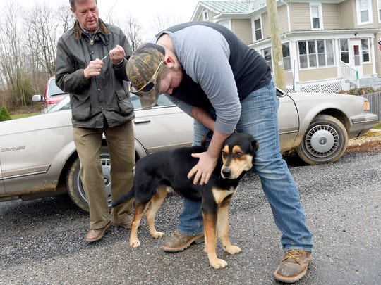 Diesel is held by owner Hunter Hurley of Buena Vista as veterinarian Brent Hall of the Raphine Animal Clinic prepares the vaccine injection during a rabies vaccination clinic held at Raphine Volunteer Fire Company on Saturday, Jan. 9, 2016.