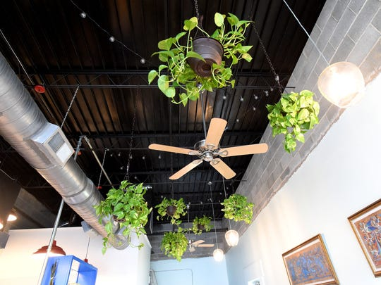 Hanging baskets with plants hang alongside lights around one of the ceiling fans inside Chicano Boy Taco.