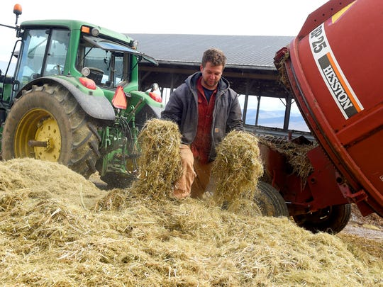 Farmer Brian Walden of Charlottesville checks the consistency of a round bale of hemp that was shredded at Riverhill Farm in Port Republic on Dec. 12, 2016.