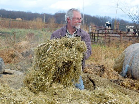 Michael Renfroe, a professor in biology at James Madison University, checks the consistency of hemp just ground down, originally from a round bale at Riverhill Farm in Port Republic on Dec. 12, 2016.