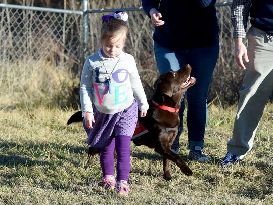 Five-year-old Lucy Rhoden spends time outside with her service dog, Hazel who is trained to recognize when she has a seizure, and her parents outside their home in Staunton on Jan. 18, 2017.