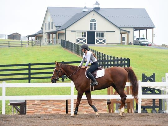 MacKensie Bowles, 17, of Staunton warms up Chewy, a Zangersheide Warmblood, in the ring before they practice jumps in Staunton on Wednesday, July 5, 2017. Bowles, who also plays volleyball for Robert E. Lee High School, will be competing in the US junior hunter national championship later this month.