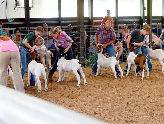 Augusta County Fair - Day 4