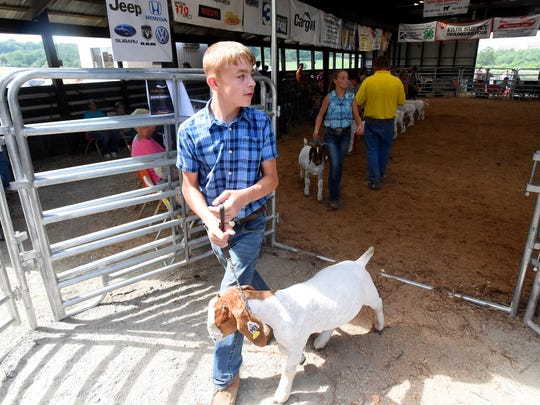 Contestants leave the show ring one at a time after
