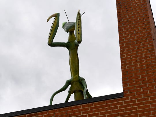 A much larger-than-life praying mantis, created by artist Mark Cline, adorns a rooftop as one of just over a dozen such insects visible in downtown Buena Vista on Sunday, April 1, 2018. They are part of Cline's annual April Fool's creation and should remain on display for the next several months.
