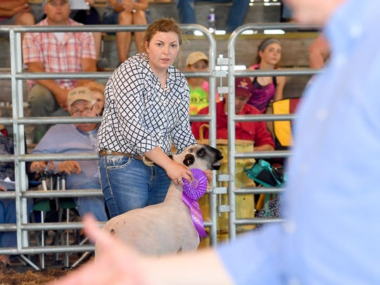Carissa Cline, 17, of Buffalo Gap High School competes and wins Division 2 champion for sheep at the 73rd annual 4-H/FFA Market Animal Show and Sale at Augusta Expo on Thursday, May 3, 2018. The event continues Friday and Saturday.