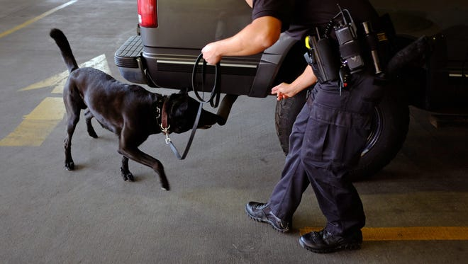 A police drug search in August.