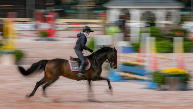 A rider practices in the Grand Prix ring at the Palm Beach International Equestrian Center in Wellington, Florida on November 15, 2018.