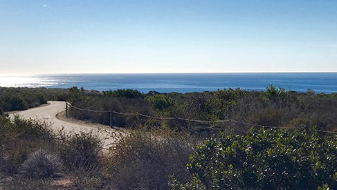 Crystal Cove State Park has many trails with stunning views.