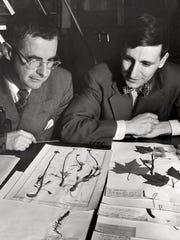 Hugh Iltis (right) and colleague John Thompson in the