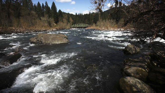 The Sandy River has seen decent fishing hold up.